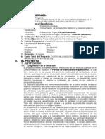 RECUPERACION Y PUESTA EN VALOR DE LOS MONUMENTOS HISTORICOS  Y  ESPACIOS PUBLICOS DEL CENTRO HISTORICO DE TRUJILLO - PERÚ