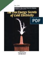Edwin V.Gray - Free Energy