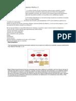 Bases Bioquímicas de Diabetes Mellitus II