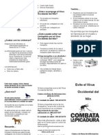 Wn v Flyer Spanish