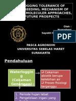 Waterlogging Presentation