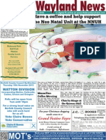 The Wayland News November 2015