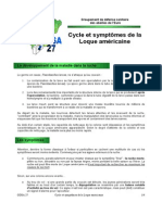 Cycle Et Symptomes de La Loque Americaine