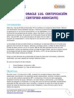 Curso DBA Oracle 11g Certificación Oca