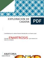 Exploracion de Cadera