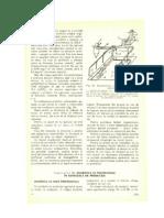 Cap.20-Zgomotul_si_trepidatiile_in_conditiile_de_productie.pdf