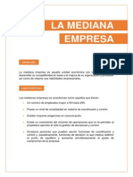 La Mediana Empresa