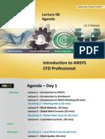 CFD Pro 14.5 L00 Agenda