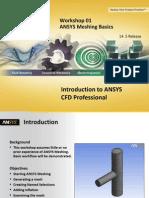 CFD Pro 14.5 WS01 ANSYS Meshing Basics
