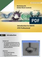 CFD Pro 14.5 WS02 Global Mesh Controls