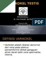 PPT Varicocele Testis