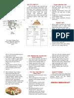Leaflet Diit CKD