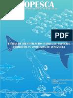 Fichas de Identificacion Rapida Maritima en venezuela