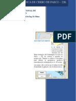 Prospección - Cerro de Pasco (Carta 22k)