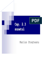 2_3_Sunetul