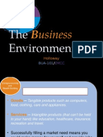 Bua 101 Business Environment
