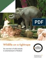 Wild Animals in Entertainment in Tahiland