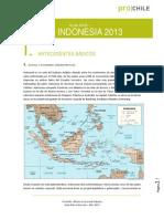 Guia indonesia
