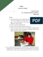 0_bufnita (1).doc