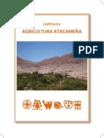 Agricultura Atacameña Libro