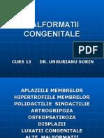 Curs 13 Malformatii Congenitale