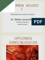 Abdomen Agudo Dr. Walter Jaramillo 1