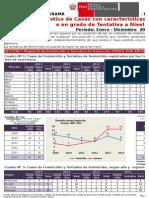 Estadística de Feminicidio y Tentativas - Perú 2014