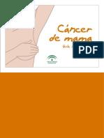 Guia_informativa Cancer de Mama