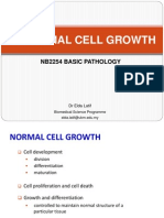 Pathology - Abnormal Cell Growth.pdf