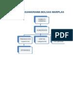 Planeacion Proceso Administrativo Formato Marplas