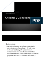 Citosina s