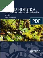 Elbers 2013 Ciencia Holistica v3