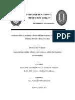 PROYETO de TESIS Plantilla de Indice