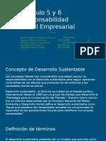 Capítulo 5 y 6 Responsabilidad Social Empresarial