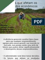 Fatores Que Afetam Os Resultados Econômicos na Agropecuária