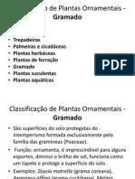 02classificacaodeplantasornamentais Gramado