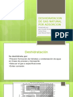 Deshidratacion de Gas Natural Por Adsorcion