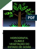 02 - Hidrografia.Clima.Vegetação