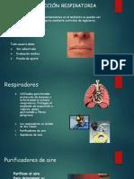 Proteccion Respiratoria , Manos, Arnes ,..