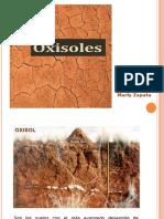 OXISOLES