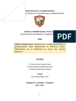 PDF Terminado