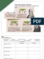 1407122860.Ficha.cuadro Comparativo.teorias Lamarck y Darwin