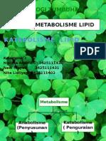 2. Katabolisme Lipid
