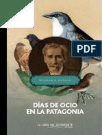 Días de Ocio en La Patagonia - Muestra