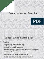 Bones, Joints, Muscles