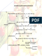 Prop.aminoac. Si Proteine