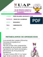Metabolismo de Los Aminoaciodos