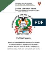 Instalacion y Mejoramiento Del Cultivo de Cacao y Plantas....Compressed(1)