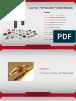 curso_particulasMagneticas2014