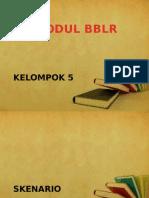 Modul BBLR